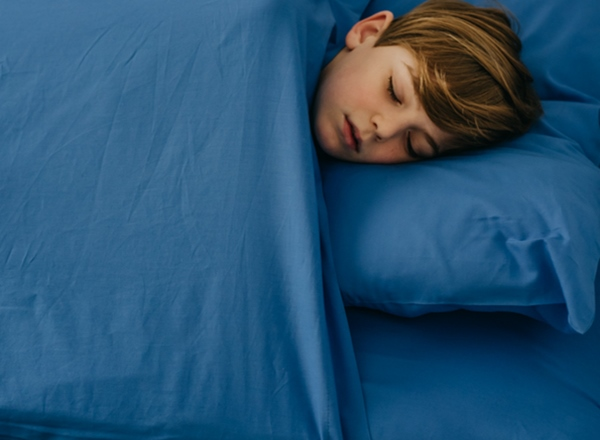 Twin Size Single Bed Zip Sheets Bright Blue